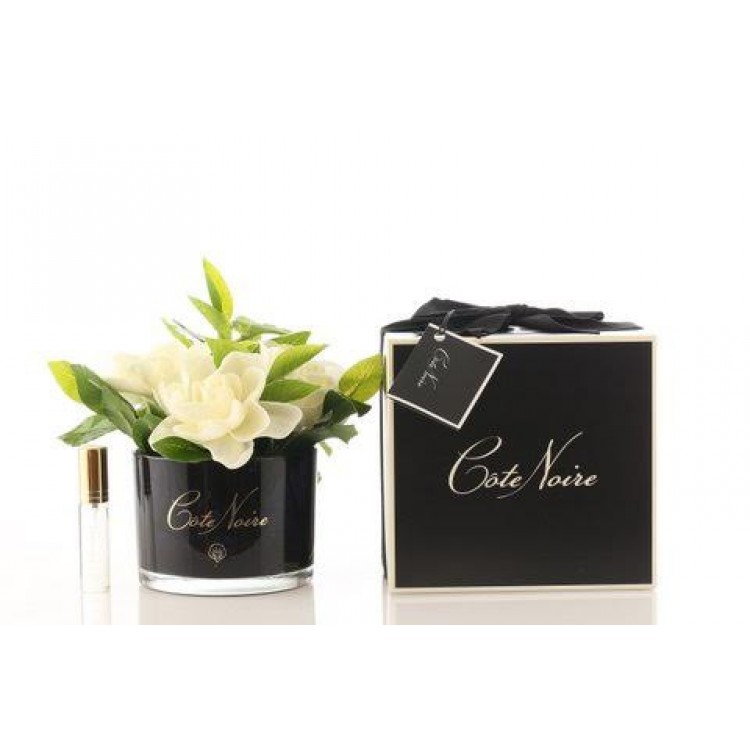 Côte Noire Perfumed Natural Touch Gardenia Bunch in Black