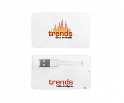 Business Card USB 2.0 Flash Drive - 4GB