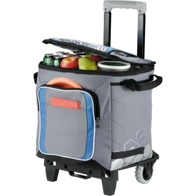 Arctic Zone® 50 Can Cooler