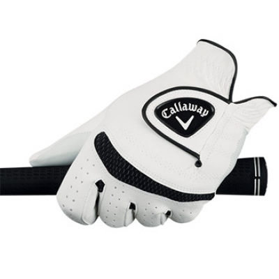 Weather Spann Glove