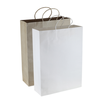 Dex Group Collection Paper Kraft Shopping Bag